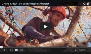 Arboristfilm