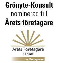 Grönyte-Konsult Nominerad Till Årets Företagare