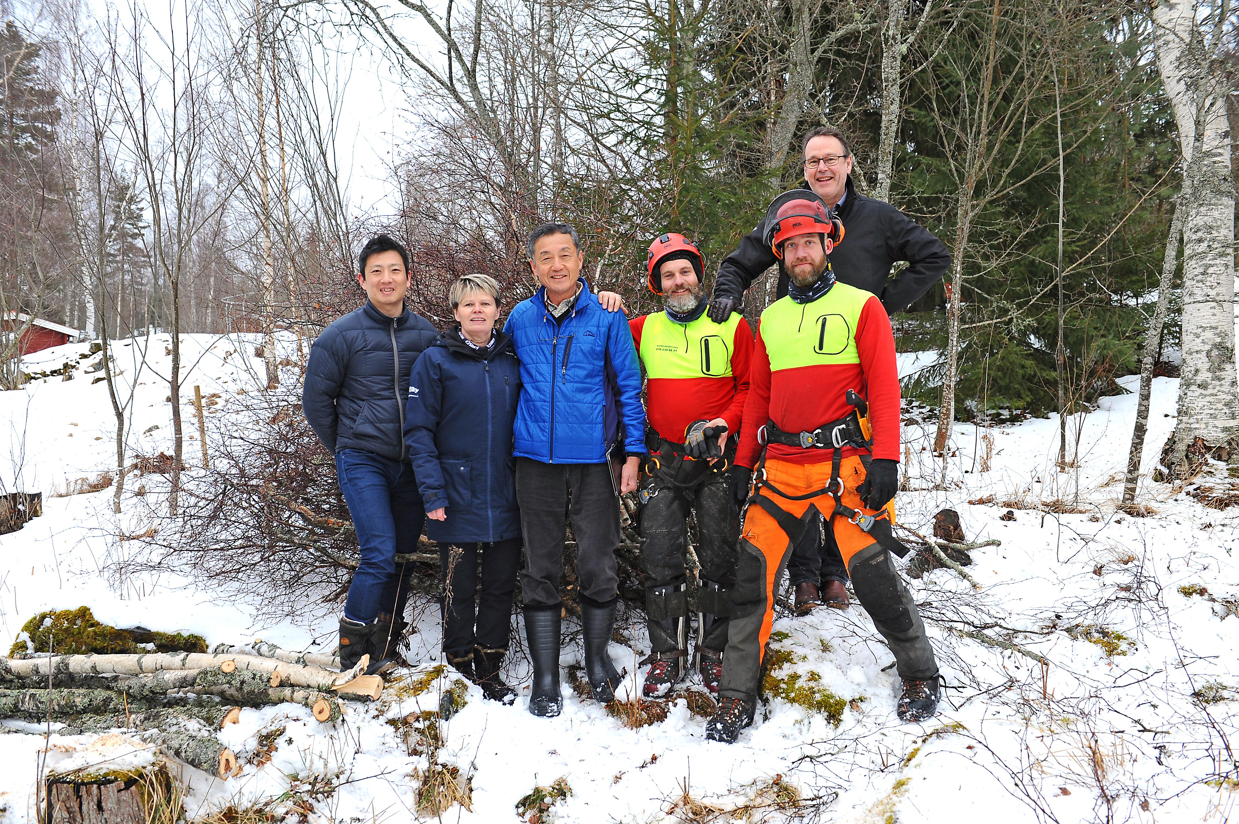 Japanska Silky Besöker Svenska Trädbeskärare