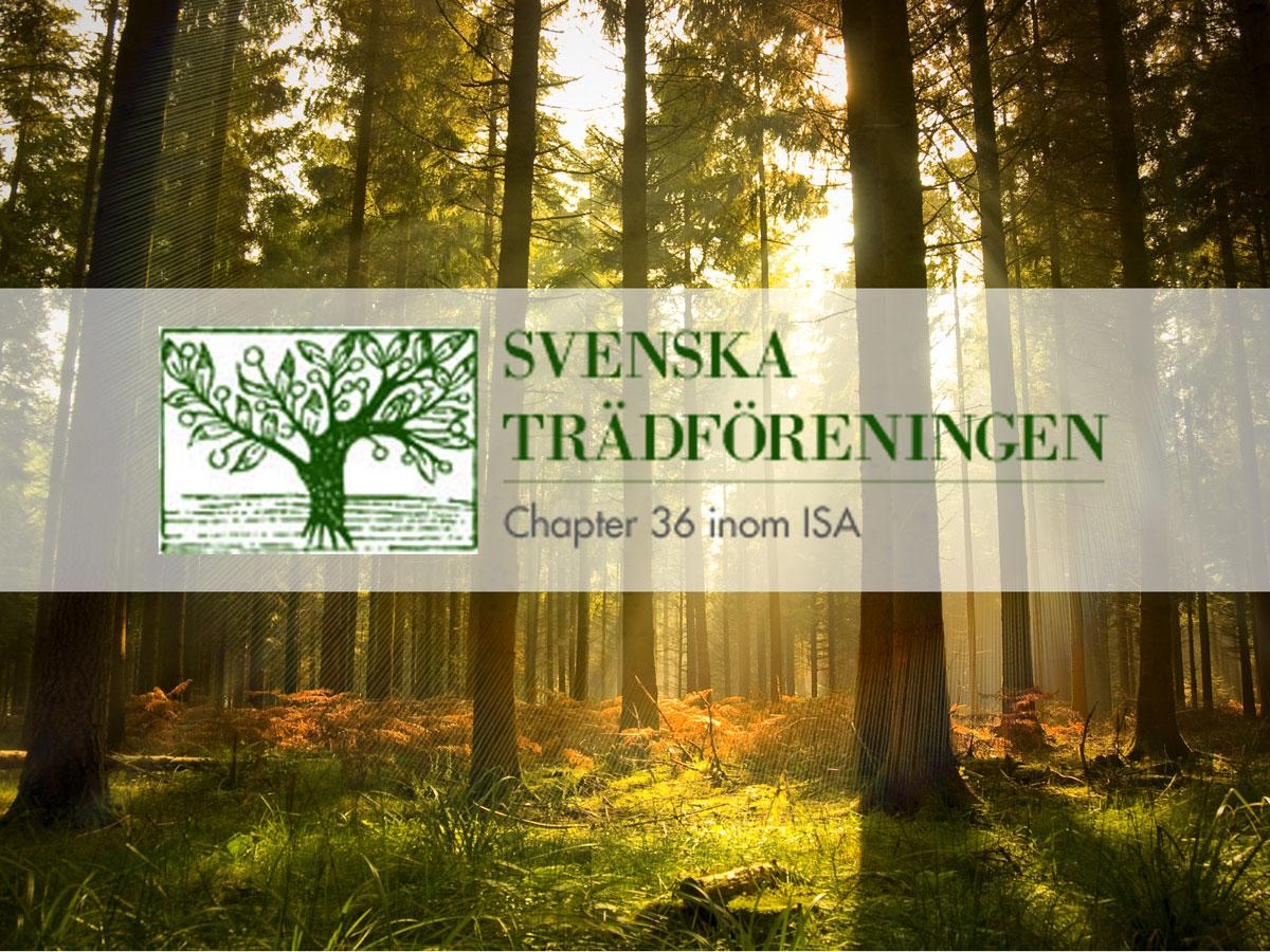 Grönyte-Konsult är Sponsor Till Svenska Trädföreningen